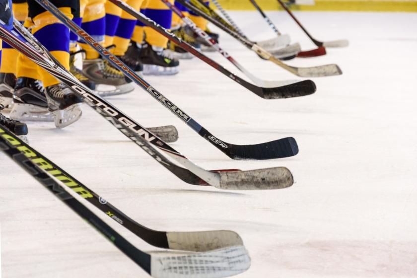 voir du hockey sur glace à Miami