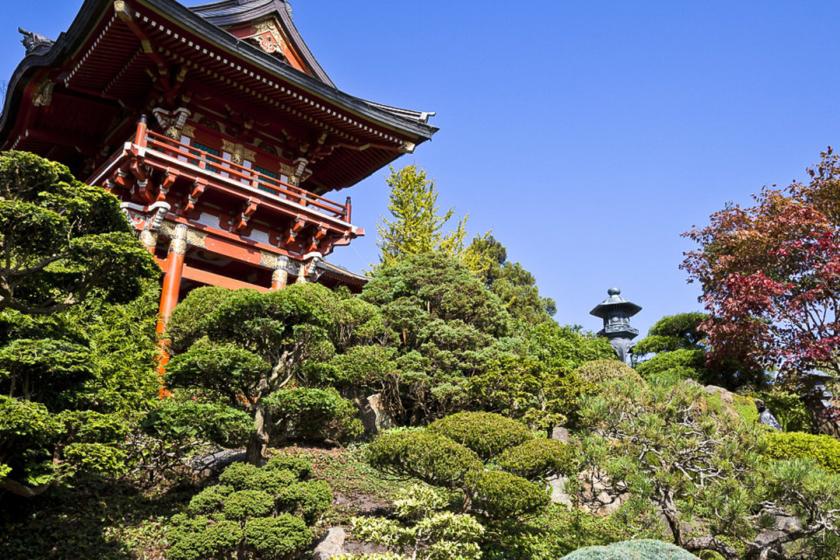 Golden Gate Park 10 incontournables de visites à faire à et à voir à San Francisco