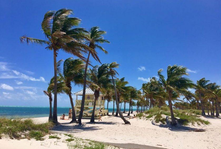 Crandon Park Les plus belles plages de Miami